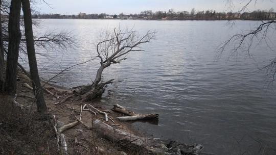 A photograph of Amico Island photo by Laura Chenault of a shore line on a river. Sandy dirt in the foreground with bare winter trees framing the image on the left side.