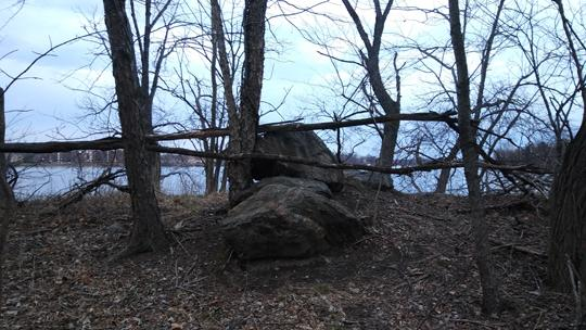A photograph of Amico Island photo by Laura Chenault of bare winter trees. A lake in the background reflects blue sky and clouds.