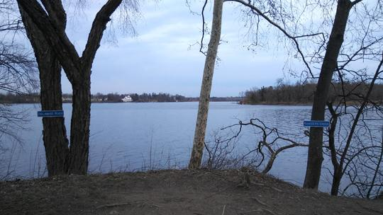 A photograph of Amico Island photo by Laura Chenault of the meeting point of the Delaware river and the Rancocas creek. A tree on either side of the frame has a sign indicated which body of water is which.