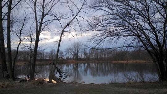 A photograph of Amico Island photo by Laura Chenault of the sunset sky and bare trees reflecting off a small lake.