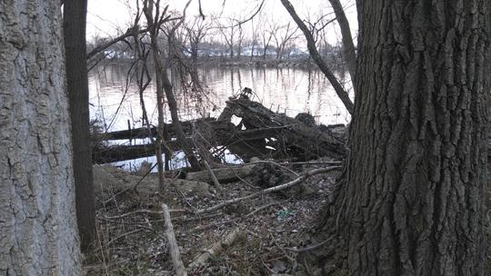 A photograph of some ruined equipment or a structure on Amico Island photo by Laura Chenault