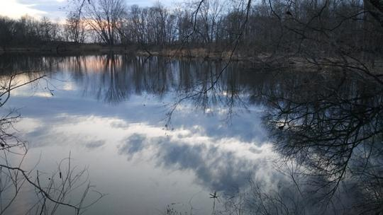 A photograph of the sunset in water at Amico Island photo by Laura Chenault. Trees go across the top and right side of the photo.