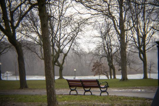 A photo of a lone, unoccupied bench in an empty park by Laura Chenault – Exploring Prospect Point at Niagara Falls State Park