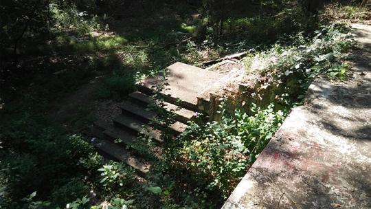 A photograph of concrete stairs leading into the forest from the back porch of an abandoned log cabin. Exploring an abaondoned cabin in Rancocas State Park by Laura Chenault