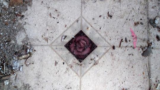 A close up of a red floral tile surrounded by white tiles; the floor in the kitchen of an abandoned log cabin. Exploring an abaondoned cabin in Rancocas State Park by Laura Chenault
