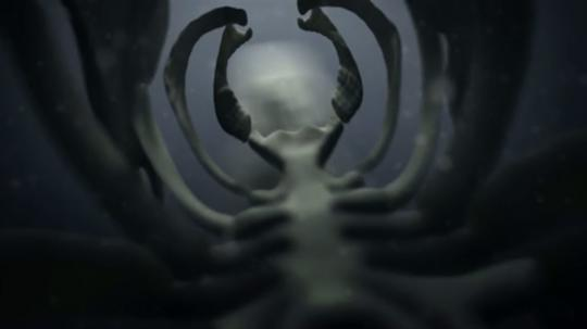Still from Skeleton by Philippe Carron