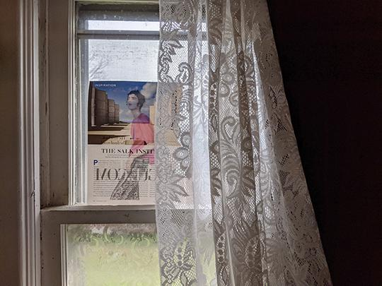 100 Days of Photos by Laura Chenault. Photo of step 3 is the magazine page in a window with lace and velvet curtains