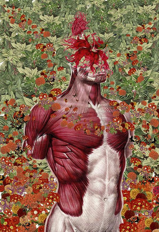 Wellness. Travis Bedel collages a muscular torso, with a giant, red flower as it's head. The background is a lush wallpaper of foilage and flowers.