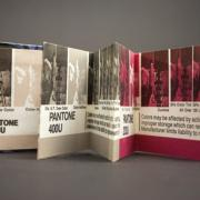 Pantone Book from the Book of the Week project by Laura Chenault