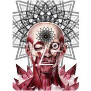 Perception by Travis Bedel
